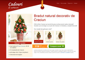 Holiday Gifts Website